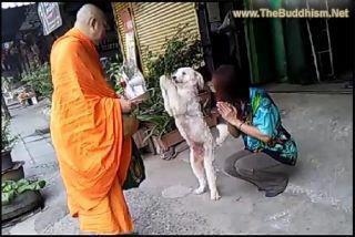 buddhism047.jpg