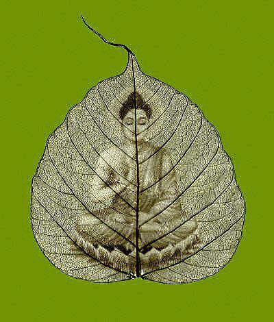 buddhism066.jpg